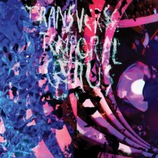 "Animal collective ""TRANSVERSE TEMPORAL GYRUS"