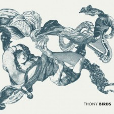 thony - birds