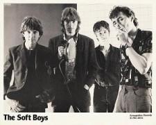 hitchcock Soft boys