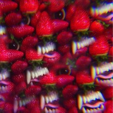 Thee Oh Sees FLOATING COFFIN 2013 – Castle Face Records