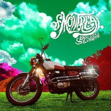 """of Montreal   """"LOUSY WITH SYLVIANBRIAR"""
