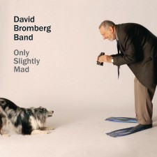 "David Bromberg Band   ""ONLY SLIGHTLY MAD"""