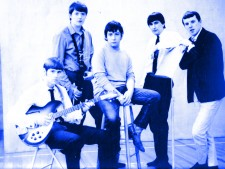 TheAnimals