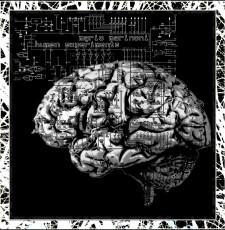 mario marinoni - human experiments