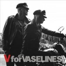 The-Vaselines-300x300