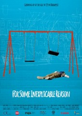 for_some_inexplicable_reason_locandina