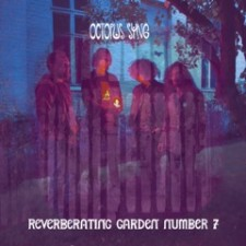 Octopus Syng Reverberating Garden No. 7   cover vinyl