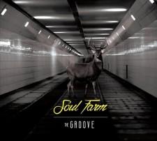 The Groove SOUL FARM