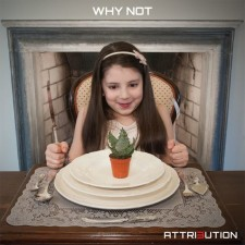 Attrbution cover