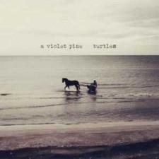 A Violet Pine TURTLES