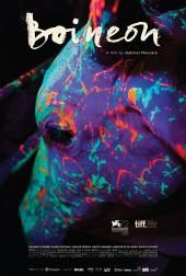 neon-bull-poster