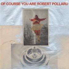 pollard ALBUM COVER