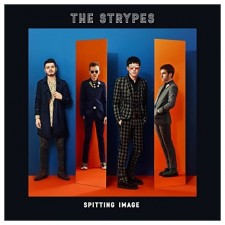 strypes spitting image