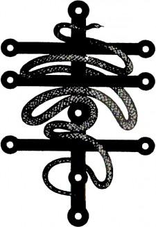 Cordis Cincti Serpente logo