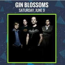 CF18-Gin-Blossoms